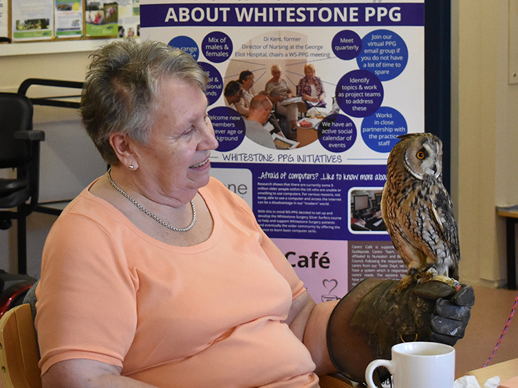 Hawkwise at Caring Cafe